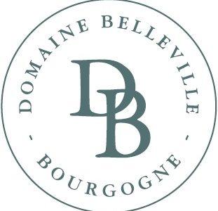 Majstorska vina – Parcele vinarije Domaine Belleville